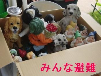 台風 008.jpg